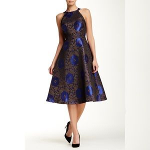 Eva Franco Black and Blue Metallic High Neck Dress